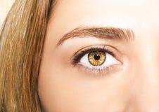 Beautiful insightful look women`s eyes Stock Photography