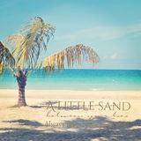 Beautiful instagram of lone palm tree on a tropical beach  with Stock Photography