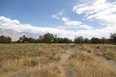 Inyo County Landscape Stock Image