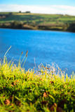 Beautiful irish landscape green meadows at the river Co.Cork, Ireland. Stock Photo