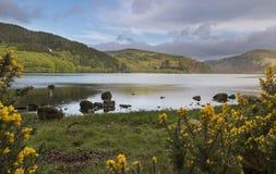 Beautiful Irish landscape of the Lough Dan lake. Lough Dan is laying peaceful in the sun royalty free stock image