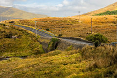 Beautiful Irish landscape and nature Royalty Free Stock Images