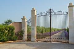 Beautiful iron gate Stock Images