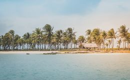 Beautiful island beach  with palm trees and thatch huts on coas. T Royalty Free Stock Photo