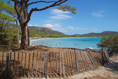 Beautiful island and exotic tropical beach in caribbean sea . Royalty Free Stock Images
