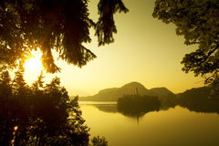 Beautiful island on lake Bled Stock Photos