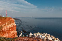 Beautiful island named Helgoland at the Northen sea of Germany Royalty Free Stock Image
