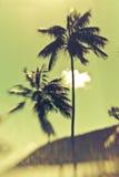 Beautiful Island Paradise Royalty Free Stock Photography