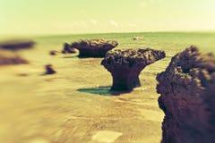 Beautiful Island Paradise Stock Images