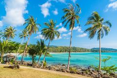 Coconut palm tree on the beach and sea. Beautiful island paradise with coconut palm tree around sea and beach on white cloud and blue sky - Holiday vacation Royalty Free Stock Image