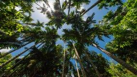 The beautiful island of Saipan. Taken in April 2017 stock image