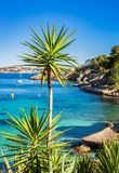 Beautiful island scenery at bay of Cala Fornells, Mallorca Spain. Spain Majorca, beautiful coast view with boats and turquoise sea water and palms in Cala Stock Photos