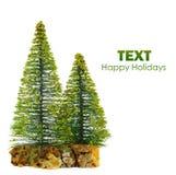 Beautiful isolated Christmas tree Royalty Free Stock Photography