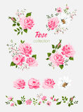Beautiful isolated pink flowers on the white background. Set of different floral design elements Stock Photography