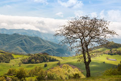 Beautiful Italian Countryside Landscape over Rolling Hills and B Royalty Free Stock Images
