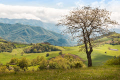 Beautiful Italian Countryside Landscape over Rolling Hills and B Royalty Free Stock Photography