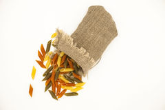 Beautiful Italian pasta Penne rigate  from durum wheat  in a linen sack, closeup on a white background Stock Photo