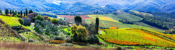 Beautiful Italy - autumn vineyards of Chianti - vine region of T. Panoramic view of vineyards in Chianti,Tuscany,Italy stock photography