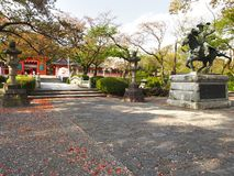 The beautiful japan garden in kyoto ,japan Royalty Free Stock Photos