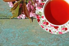 Beautiful japanese cherry tree and a cup of tea Royalty Free Stock Photos