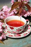 Beautiful japanese cherry tree and a cup of tea Stock Photo