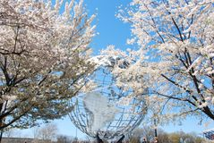 Beautiful Japanese Cherry Trees & Worlds Fair Globe Stock Photo