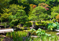 Beautiful Japanese garden Stock Photos