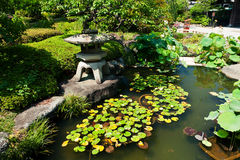 Beautiful Japanese garden Stock Images