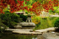 Beautiful Japanese Garden in autumn Royalty Free Stock Images