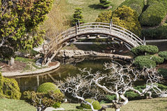 Japanese Garden. A Beautiful Japanese Garden with Bridge and Pond Stock Photo