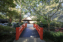 Beautiful Japanese garden at Descanso Garden Stock Photos