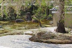 Beautiful japanese garden Royalty Free Stock Image