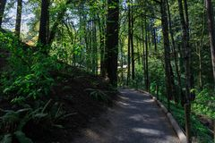 Beautiful Japanese Garden in Portland, Oregon. Beautiful Japanese Garden in Portland Oregon USA royalty free stock photos