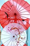 Beautiful Japanese umbrella with design of flowers Stock Photo
