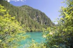 Beautiful Jiuzhaigou National Park Royalty Free Stock Photo