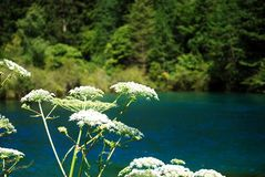Beautiful Jiuzhaigou Stock Images