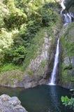 Beautiful jungle waterfall Doña Juana Royalty Free Stock Photo
