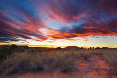 Beautiful kalahari sunset with dramatic clouds and grass Royalty Free Stock Photos