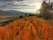 Beautiful Kamloops hike Stock Images