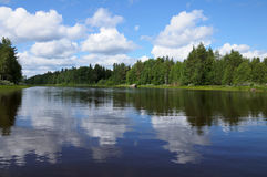 Beautiful Karelian forest and lake Stock Photography