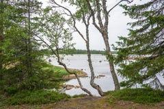 Beautiful Karelian landscape. Royalty Free Stock Photos