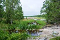 Beautiful Karelian landscape. Stock Photography