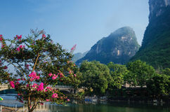 Beautiful Karst mountain landscape Stock Photography