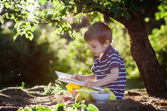 Beautiful kid boy, reading a book in garden, sitting next to a t Royalty Free Stock Images