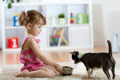 Beautiful kid girl feeding her dog in the living room stock photos