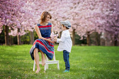 Beautiful kid and mom in spring park, flower and present. Mother. Beautiful kid and mom in cherry blossom spring park, child giving flowers to mother. Mothers Royalty Free Stock Photo