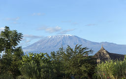 Beautiful Kilimanjaro mountain with a small cap of snow Stock Images