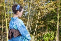 Beautiful kimono woman Stock Image