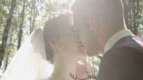 Beautiful kiss of the bride and groom in the woods stock video