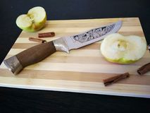 Beautiful kitchen knife with the drawing of a jaguar royalty free stock images